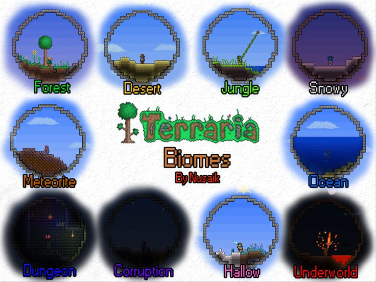 I've Been Putting In Many Hours Into Terraria Lately -